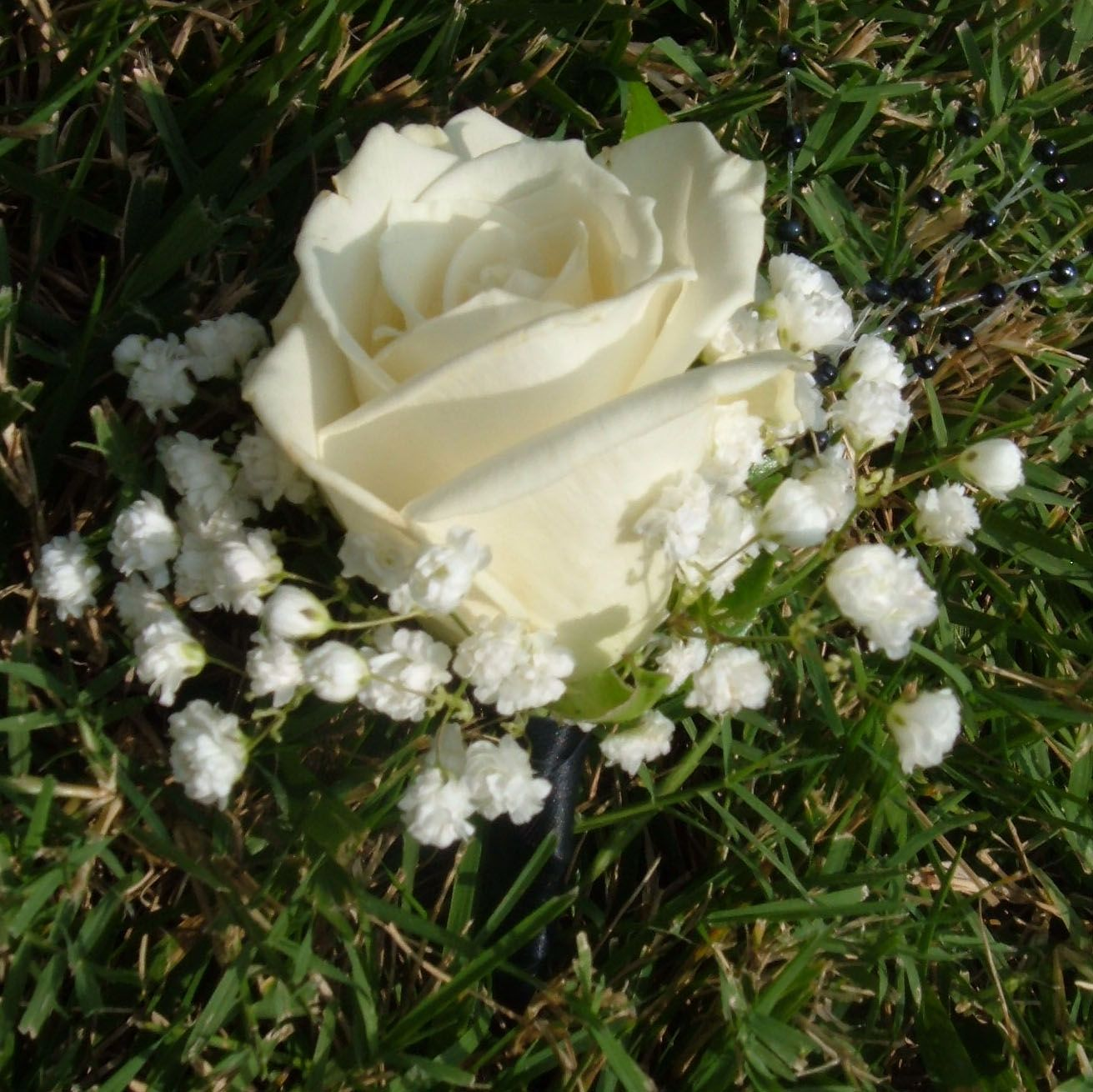 White Garden Rose Boutonniere white rose boutonniere with babys breath and stem wrapped in black