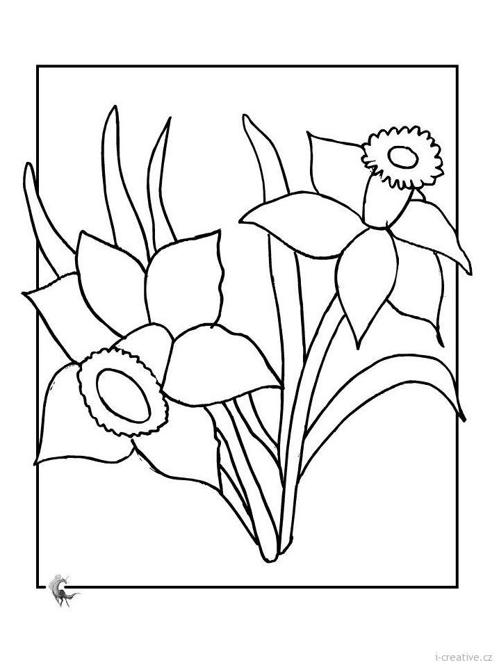 Pin de Lenka Hradilová - Smáhová en Květiny | Pinterest