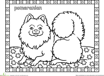 free coloring pages dog breeds | Color the Pomeranian | Adult coloring | Dog coloring page ...