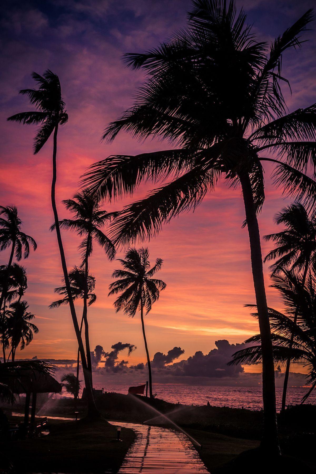 Sunrise At Salvador Bahia Brazil By Marcello Landolfi