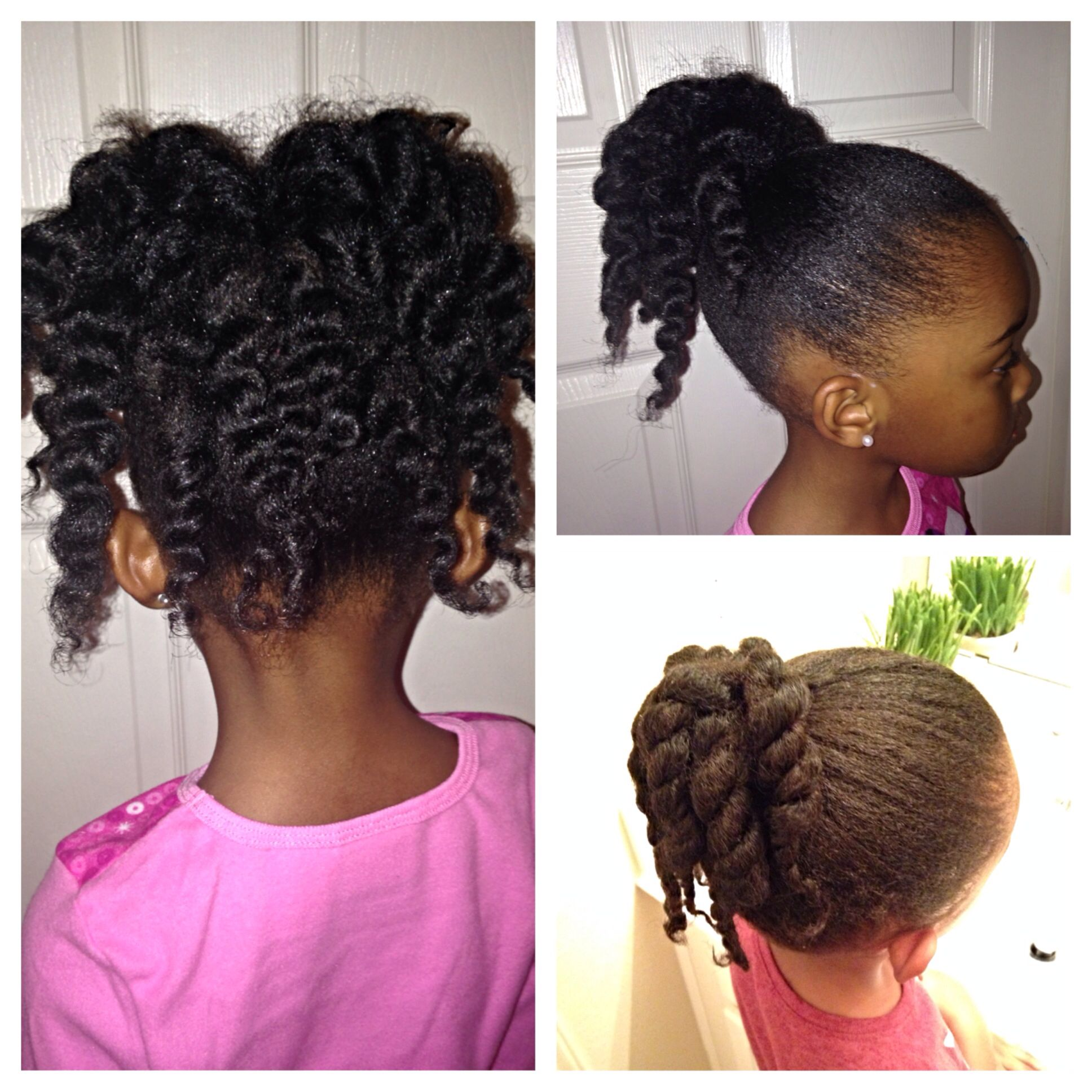 Natural Hairstyles Ponytails Ponytail With Twist Bottom Right Picture Ponytail With Twist Out