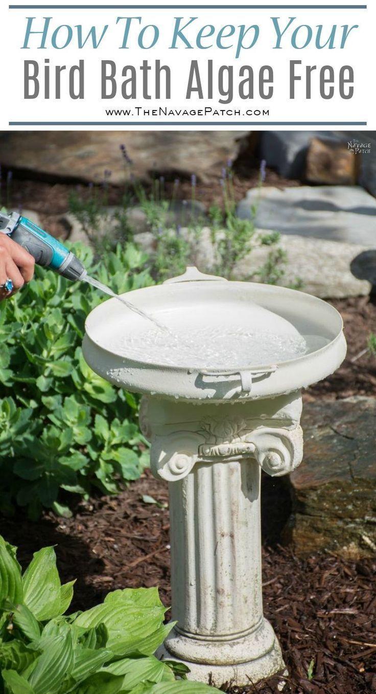 Diy bird bath how to make a bird bath how to keep your