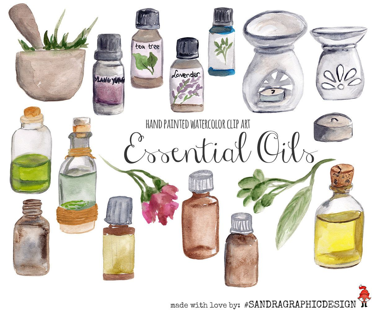 Essential Oils Clip Art Hand Painted Watercolor Clipart 5233