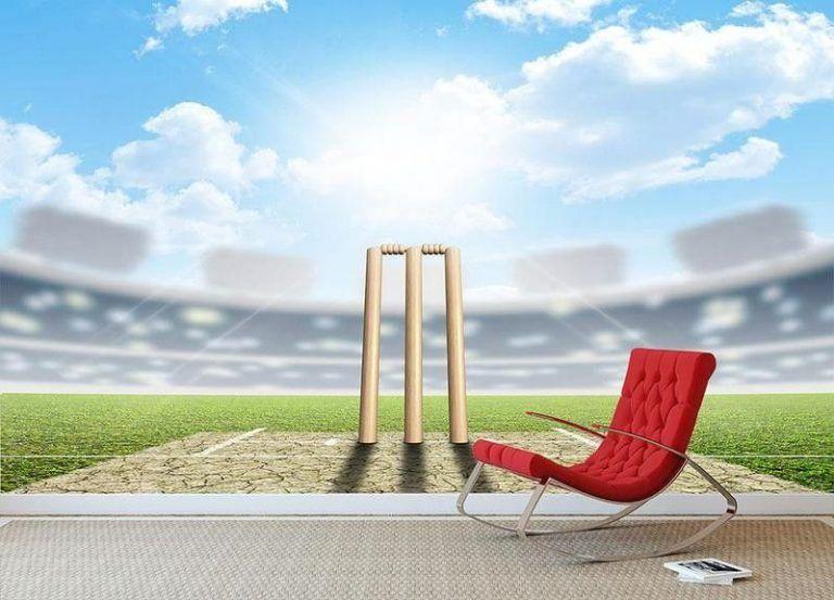 Fantasy cricket app development website development