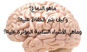 ماهو دماغ الانسان وكيف تقوم بالحفاظ على نشاطه وماهي الأشياء السلبية المؤثرة عليه Food Vegetables Garlic
