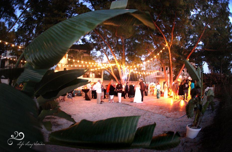 A beach wedding with string lighting on sunset beach in Treasure Island, FL. www.TampaLights.com ...