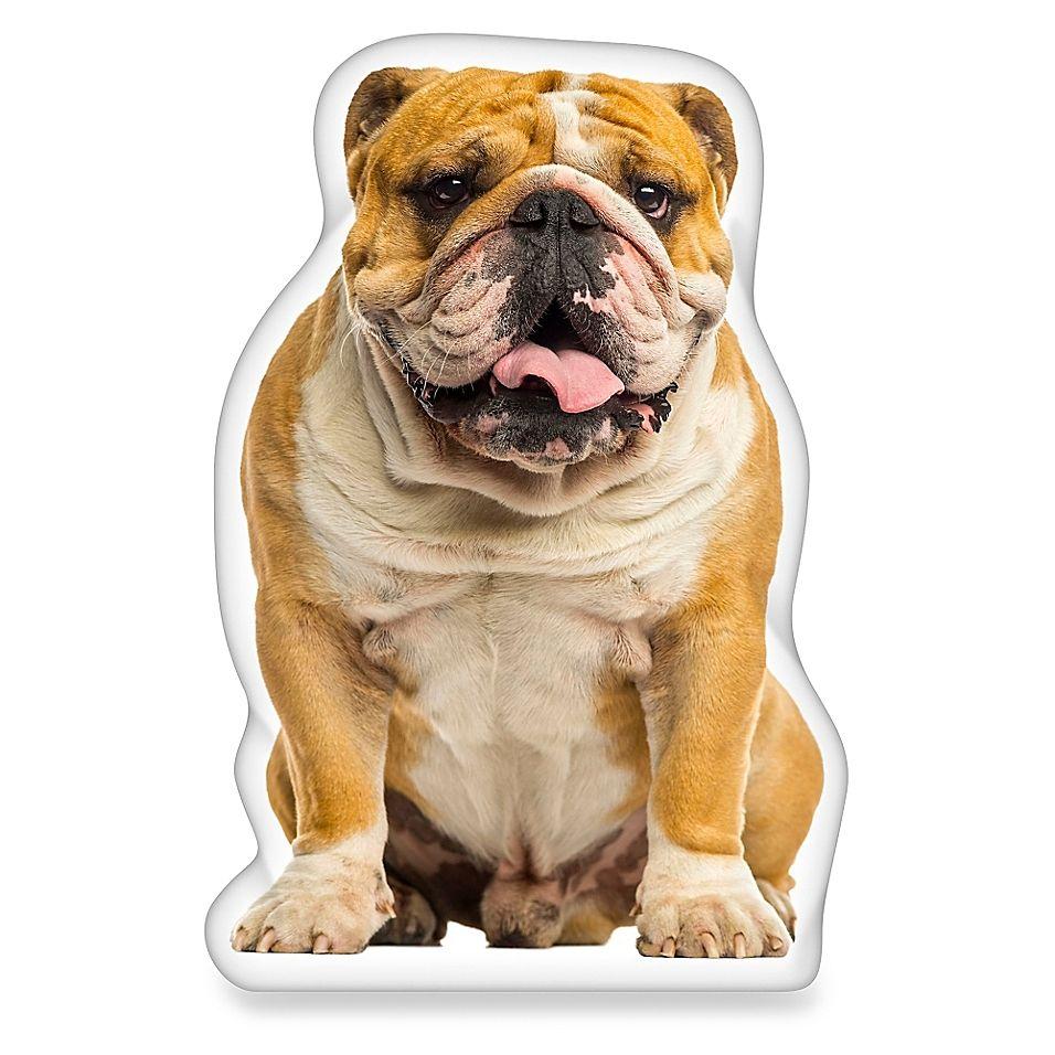 Ileesh English Bulldog Shaped Throw Pillow White Bulldog Puppies French Bulldog English Bulldog Funny