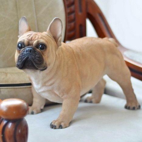 Dog French Bulldog Statue #frenchbulldogfullgrown