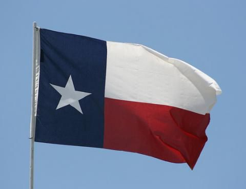 Flag Of Texas Texas State Flag State Flags Texas Flags