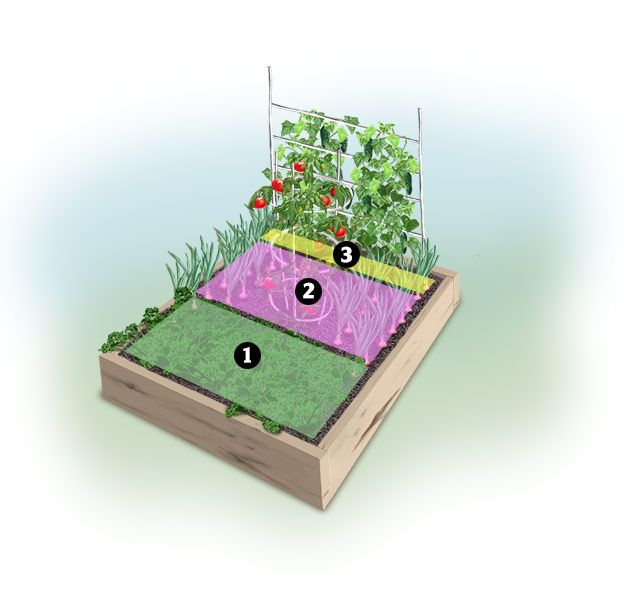 Illustration Of A 4x4 Tabouli Garden With Colored Planting