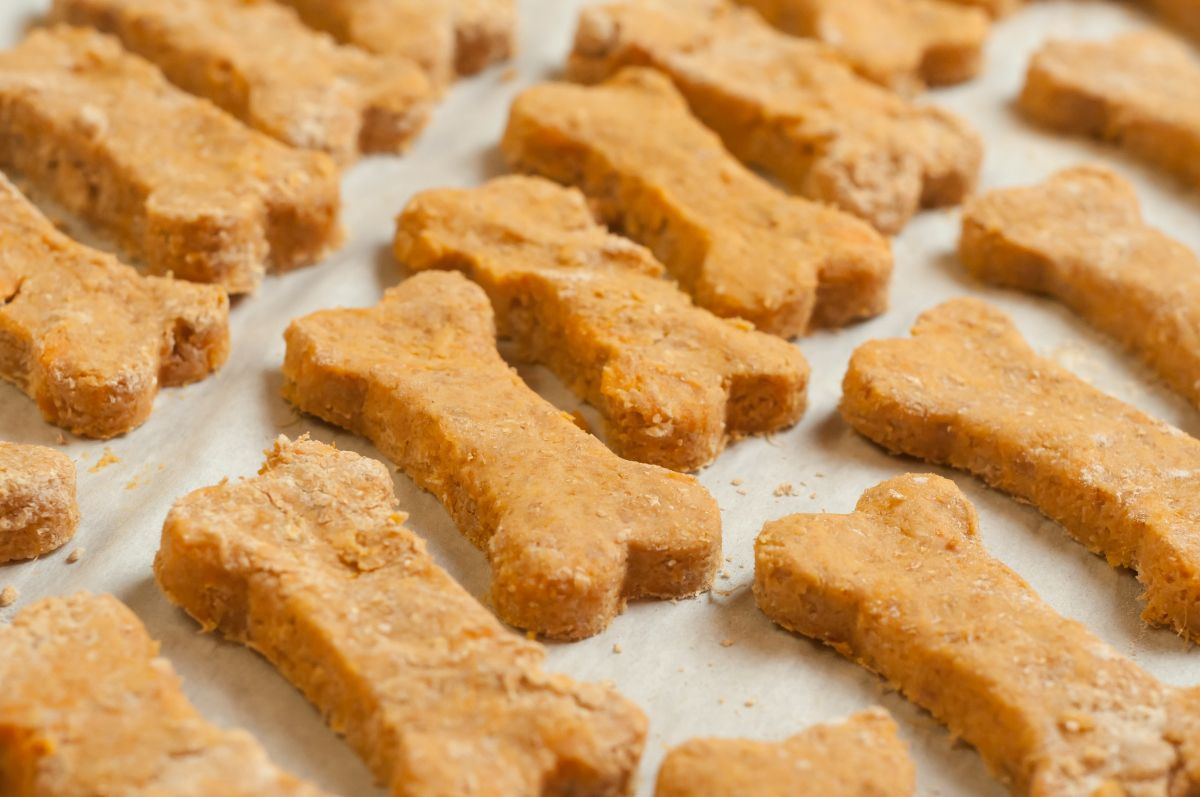 3ingredient sweet potato dog treats sweet potato dog