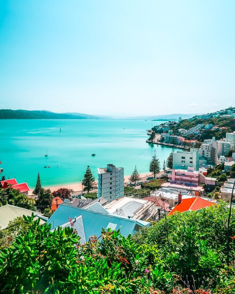 One Day in Wellington, NZ Walking Itinerary in 2020