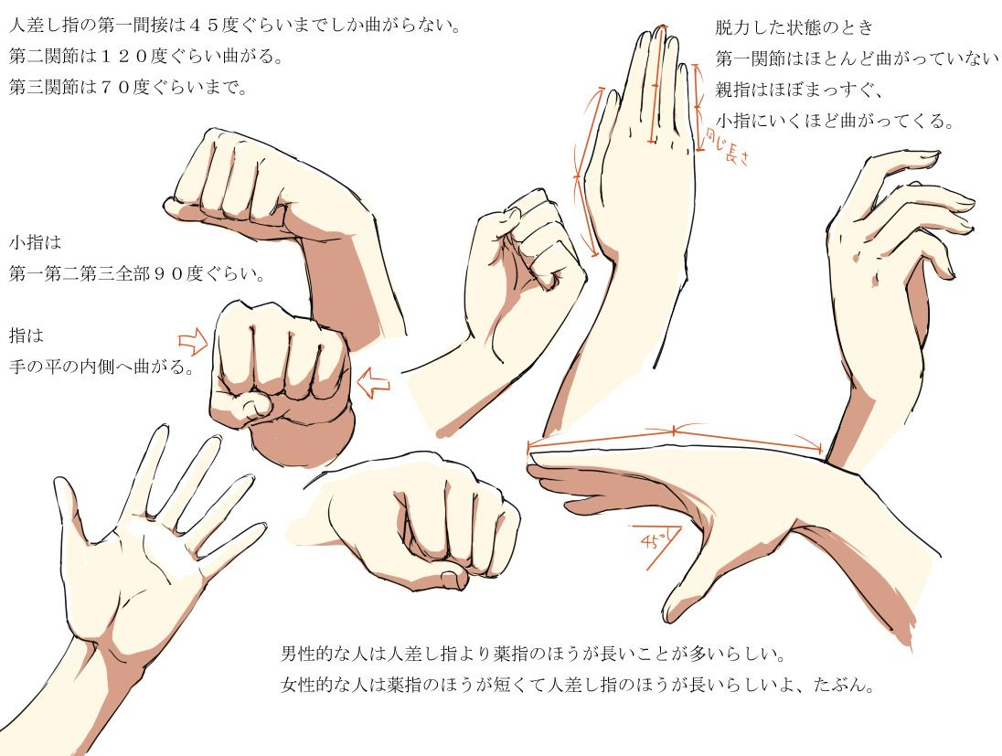Anime Hands Hands Anatomy V2 In Beginnersunite , By Bardi3l · How To Draw
