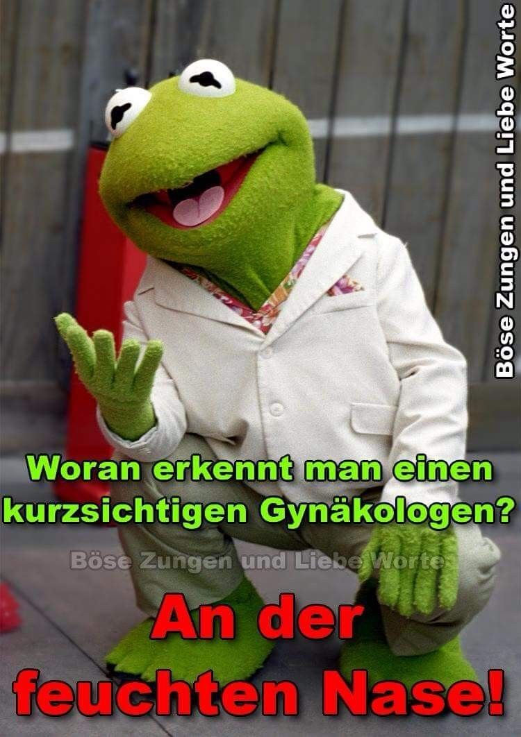 Kermit Bildzitate Zitate Und Spruche Mit Bild
