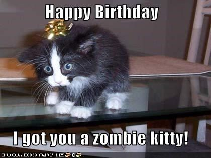 Happy Birthday I Got You A Zombie Kitty Funny Animal Pictures Funny Animals Funny Cats