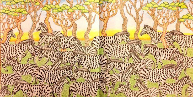 Zebras From Millie Marottas Wild Savannah Using WHSmith Pencils
