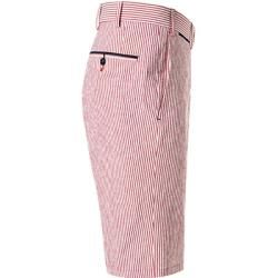 Photo of Hiltl men's pants Bermuda shorts Perena, regular fit, cotton, white-barolo striped red Hiltl