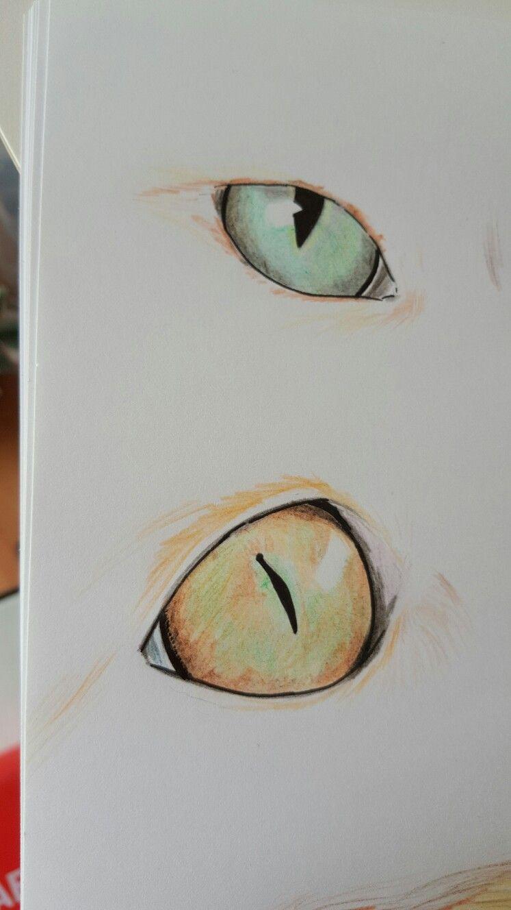 Ojos Gato | Dibujo | Pinterest | Ojos, Gato y Dibujo