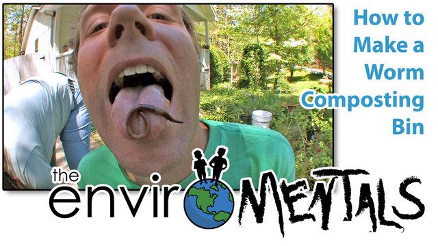 The Enviromentals (Hal Brindley and Leigh Ramsdell) show you how to build your very own worm composting bin.