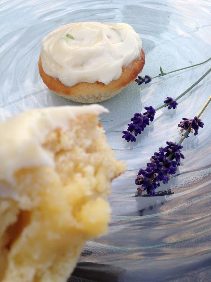 Lemon Tree Baby Cakes, recipe and video tutorial on Doolice's web site!