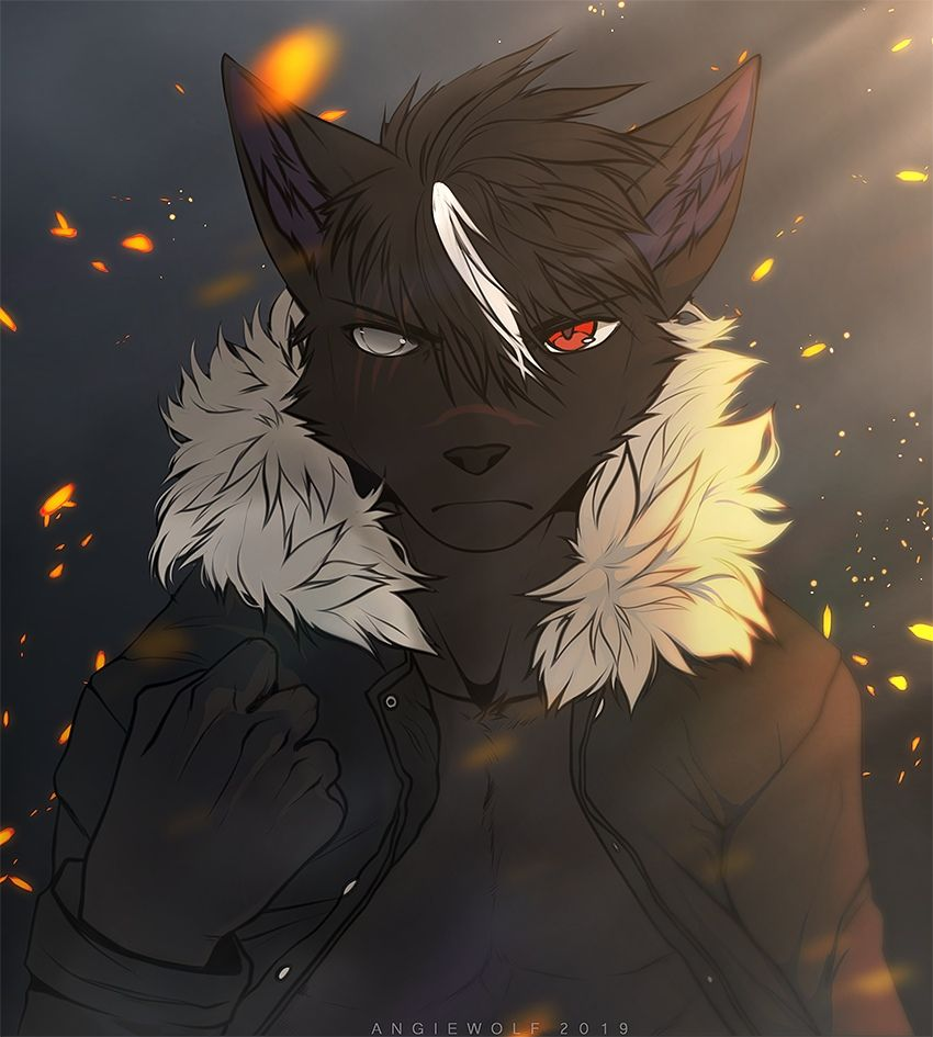 Pin By Grey Wolf On Furry Furry Art Anime Furry Furry Drawing