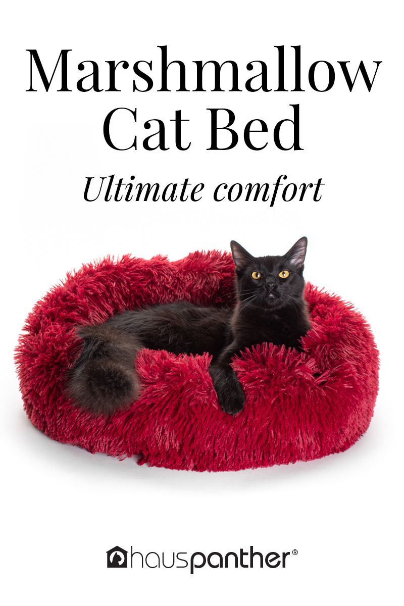 Marshmallow Cat Bed The Coziest Cat Bed You'll Ever Find