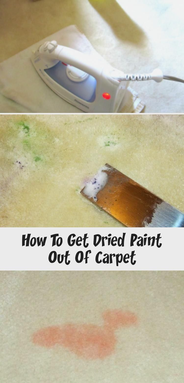 How To Get Dried Paint Out Of How To Clean Carpet Carpet Care