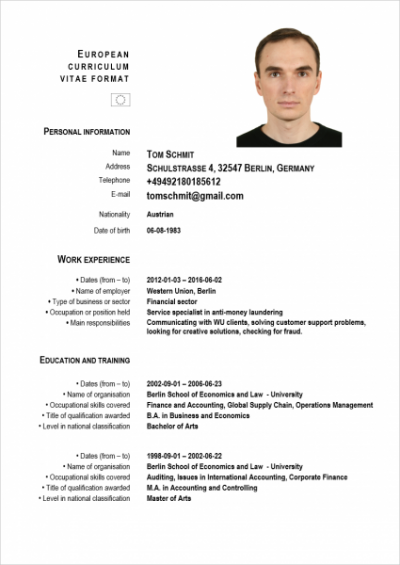 Germany 3 Resume Format Resume Writing Services