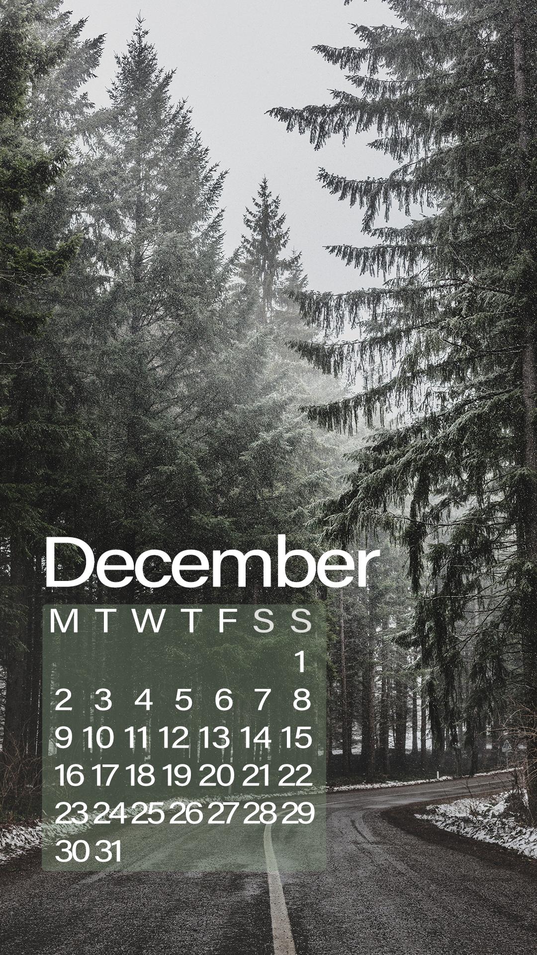 december winter 2019 forest road phone wallpaper green
