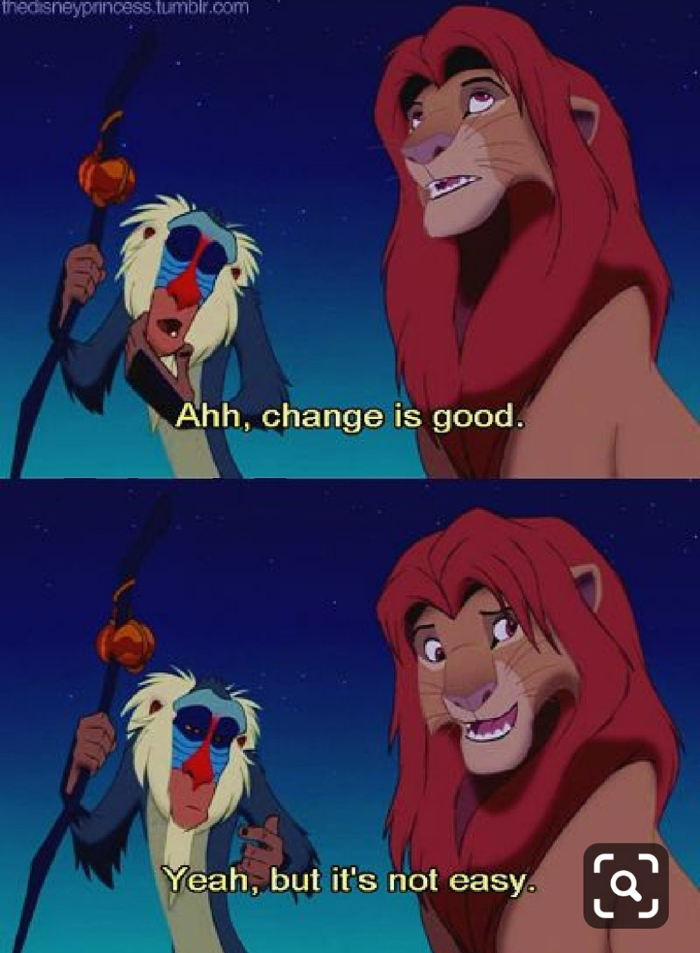 20 Jungle Laws Learned From The Lion King Koees Blog Disney Lion King Lion King Movie Lion King Quotes