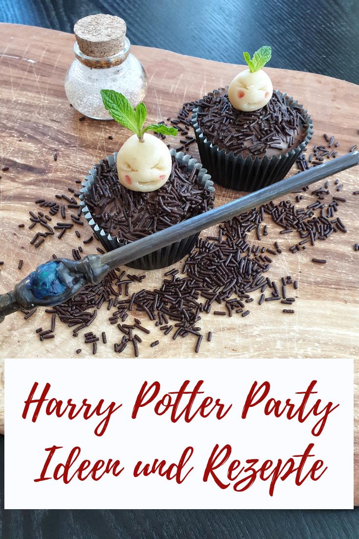 Photo of Harry Potter Themenparty