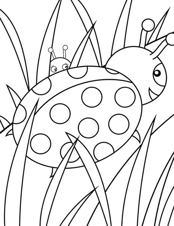 Lady Bug Behind The Grass Coloring Page Color Luna Bug Coloring Pages Ladybug Coloring Page Printable Coloring Book