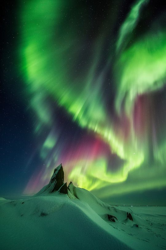 Northern lights #nature #beautifulnature https://biopop.com/