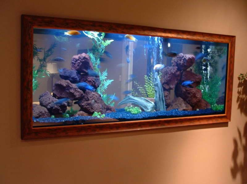 Beautiful Aquarium Decorations Ideas With Wall Design Fish
