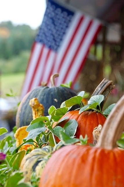 flag with pumpkins . http://www.kristywicks.com
