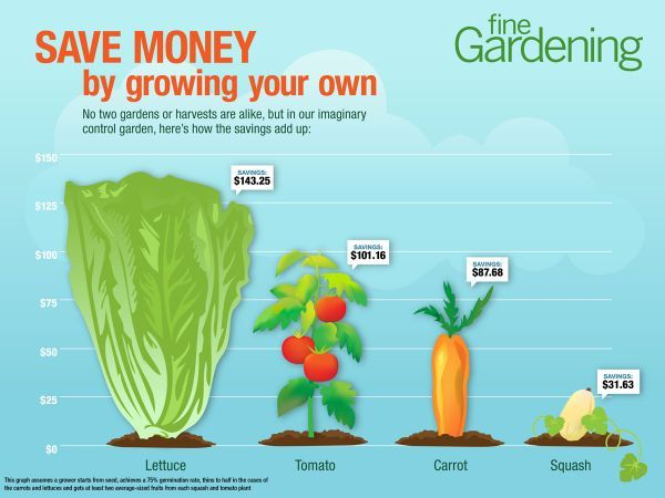 Homegrown Veggies Are Good For The Body And The Wallet Grow Your