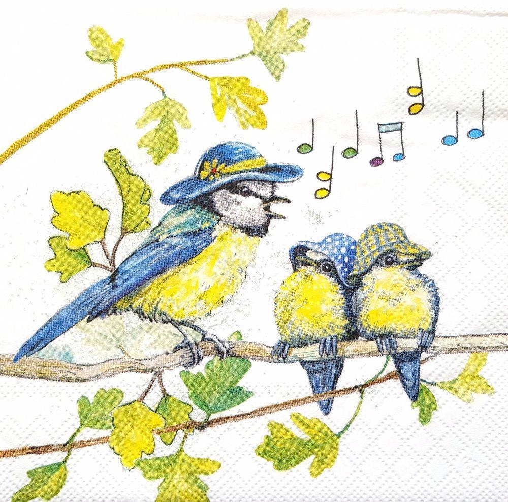 4x Paper Napkins for Decoupage Decopatch Craft Antique Parrots