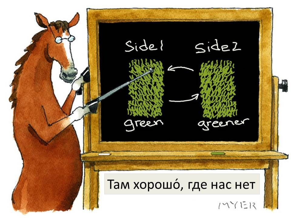 RUSSIAN: Там хорошо́, где нас нет  ( The grass is always greener on the other side)