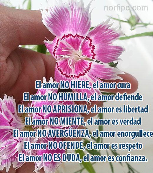 Mitos Verdades Y Falsedades Sobre El Amor Amor Poemas De Amor Oracion De Gracias