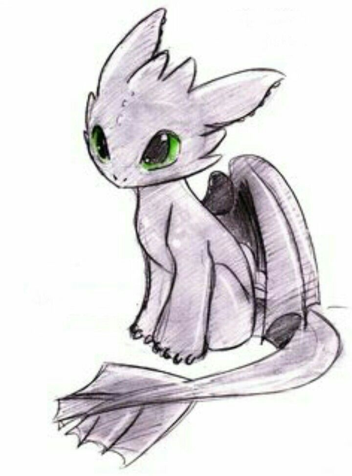 this is toothless from how to train you dragon | Cute ...