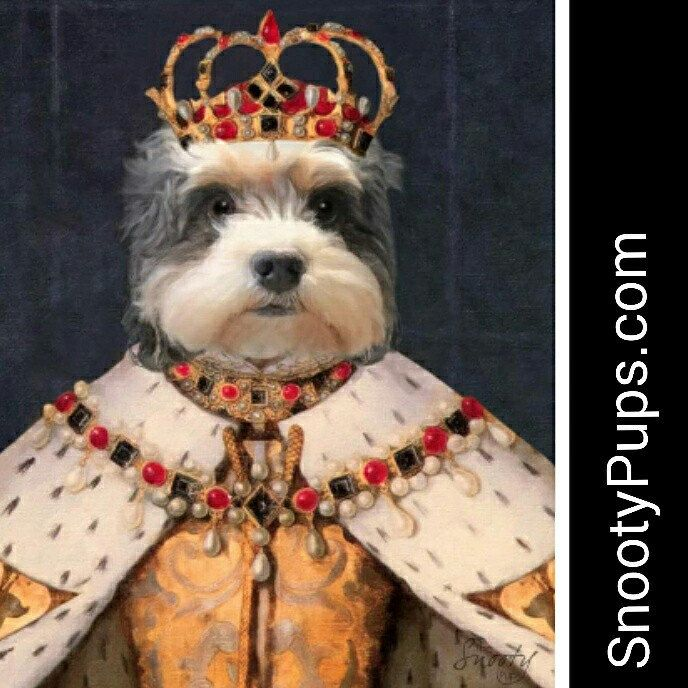 So sweet . Newsletter sign up discount! #art #dog #dogportrait