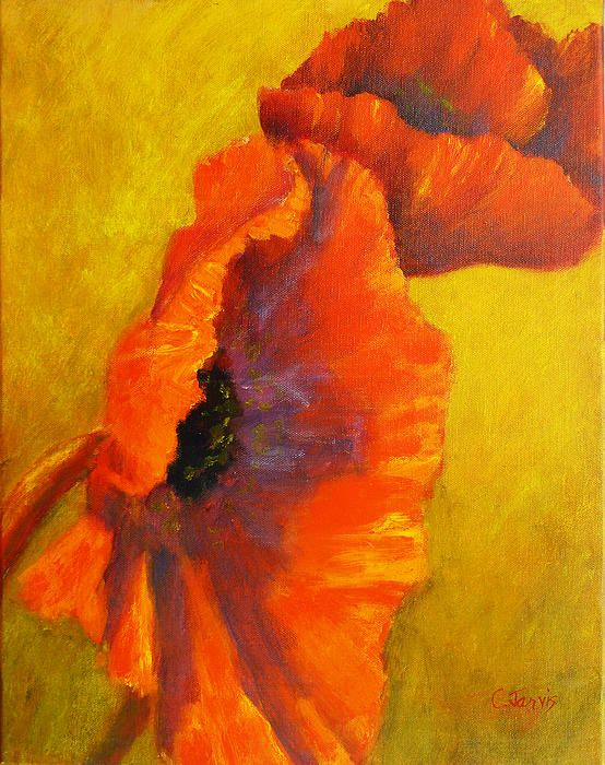 Poppies | I am really into poppies right now.