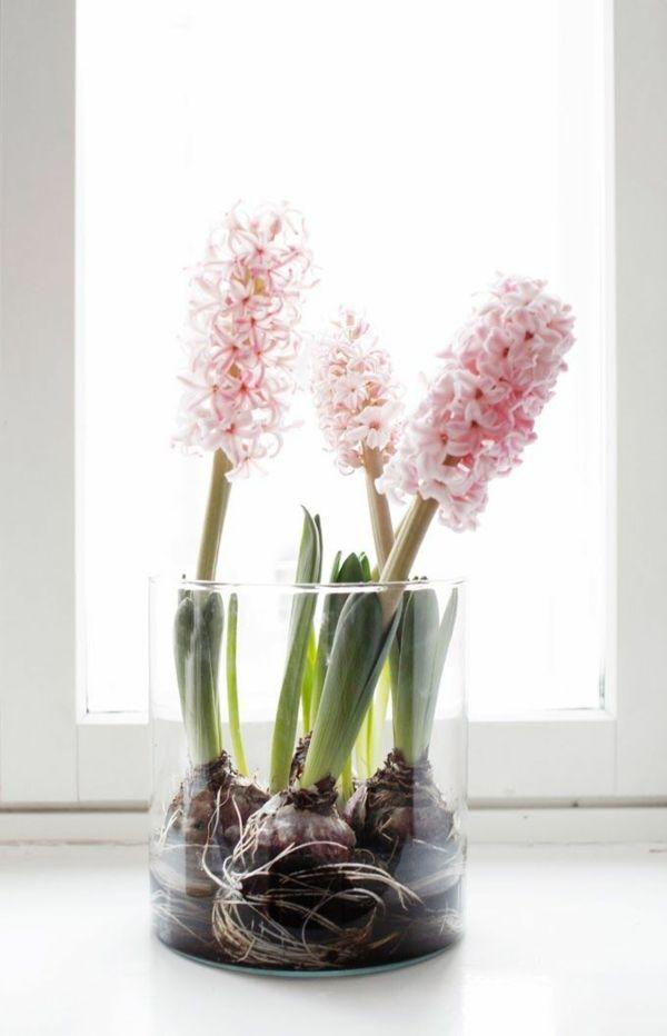 fr hlingsblumen im haus oder im garten bringen mehr lebensfreude fr hlingsblumen blumendeko. Black Bedroom Furniture Sets. Home Design Ideas