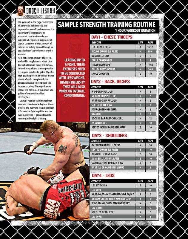 Brock Lesnar MMA Strength Workout | Weight Lifting Nutrition