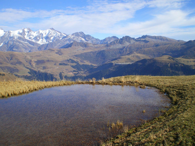 Petit Plan D Eau Dans Les Alpages Vacances Montagne Vacances Station De Montagne