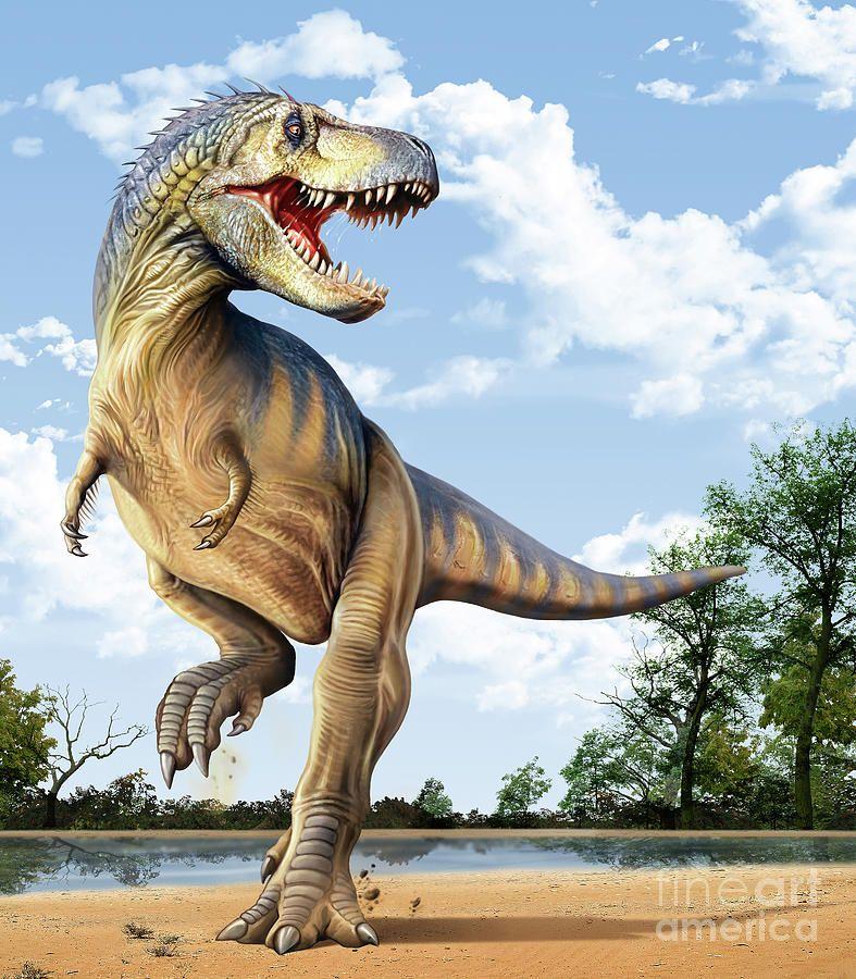 послужило тиранозавры смотреть картинки из-за неграмотного