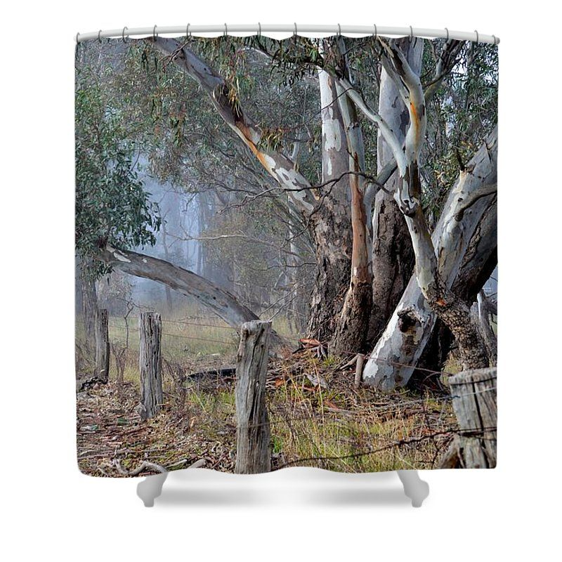 Gum Trees In The Morning Fog Shower Curtain for Sale by