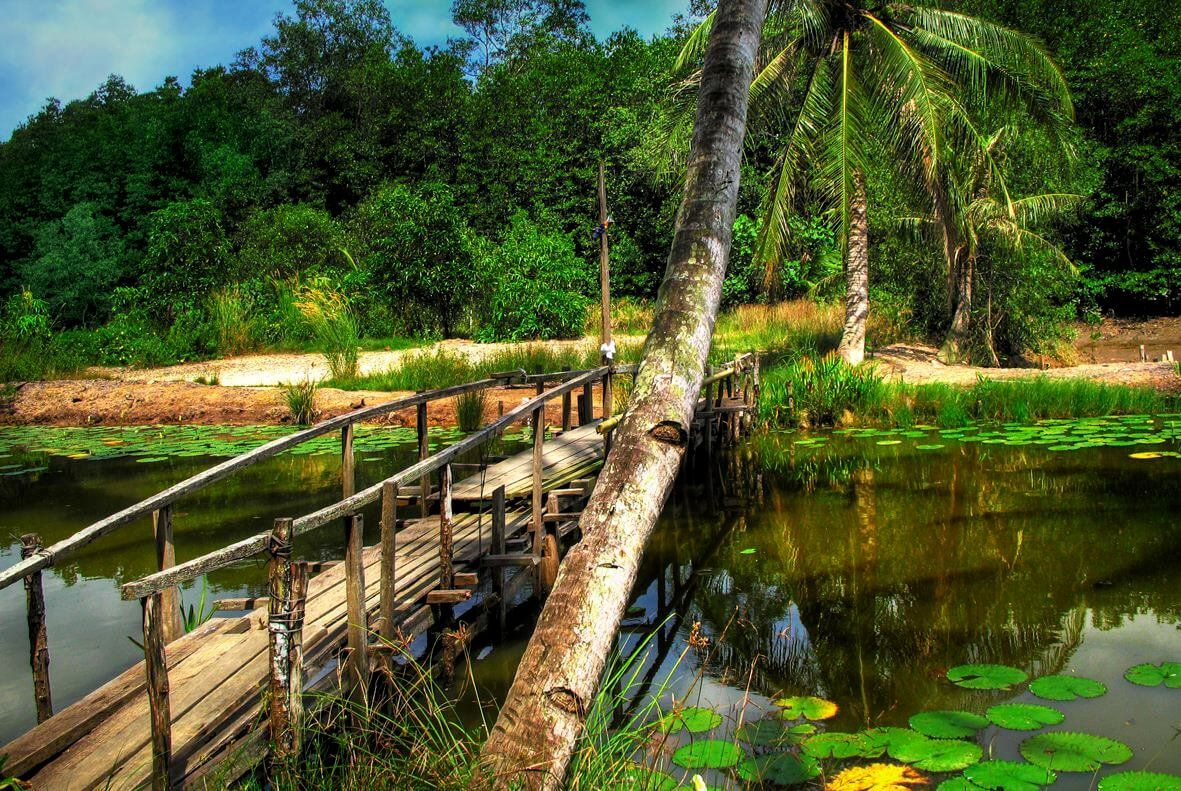جزيرة بولاو أوبين Garden Bridge Outdoor Outdoor Structures