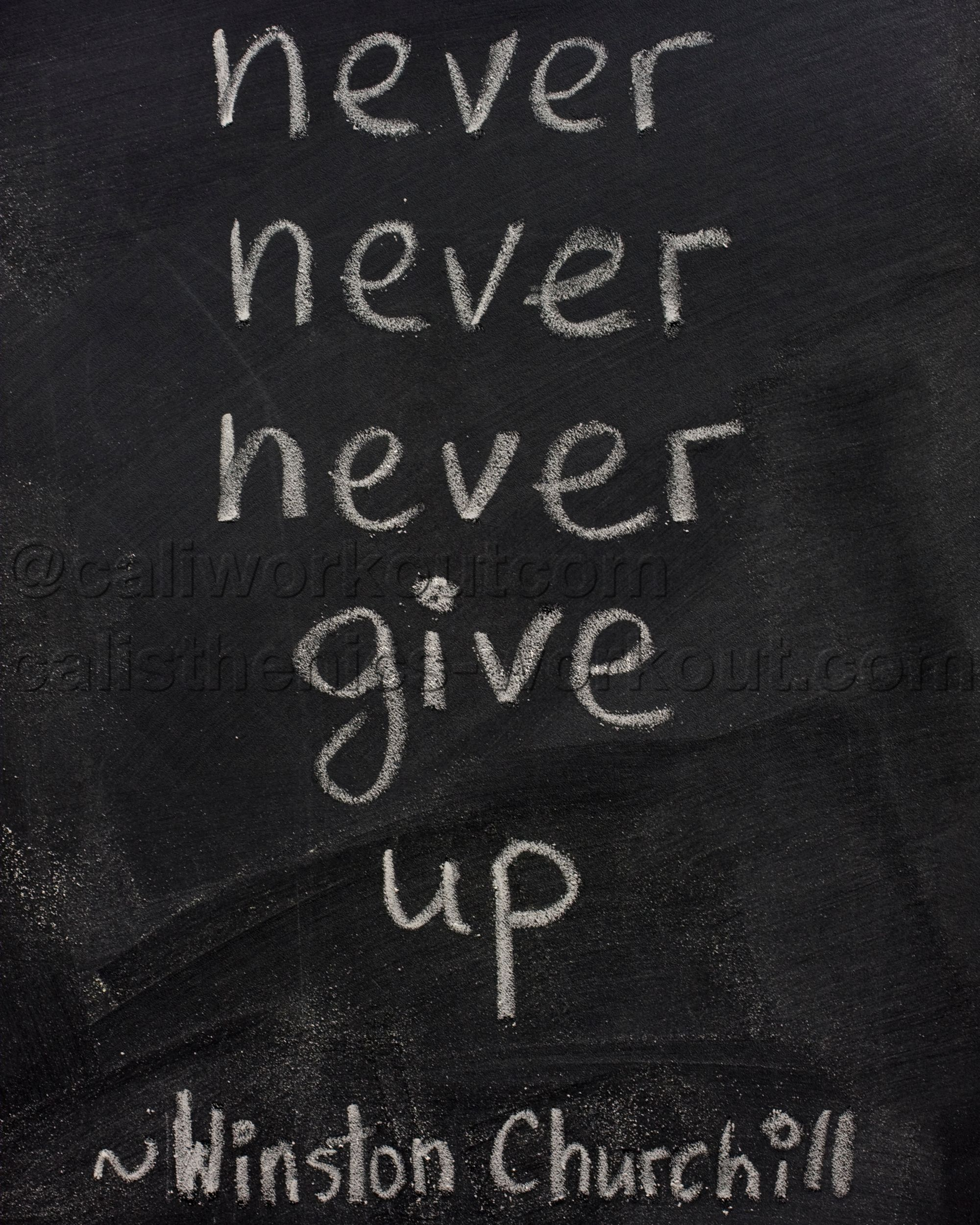 Never Never Never Never Give Up Winston Churchill You Just