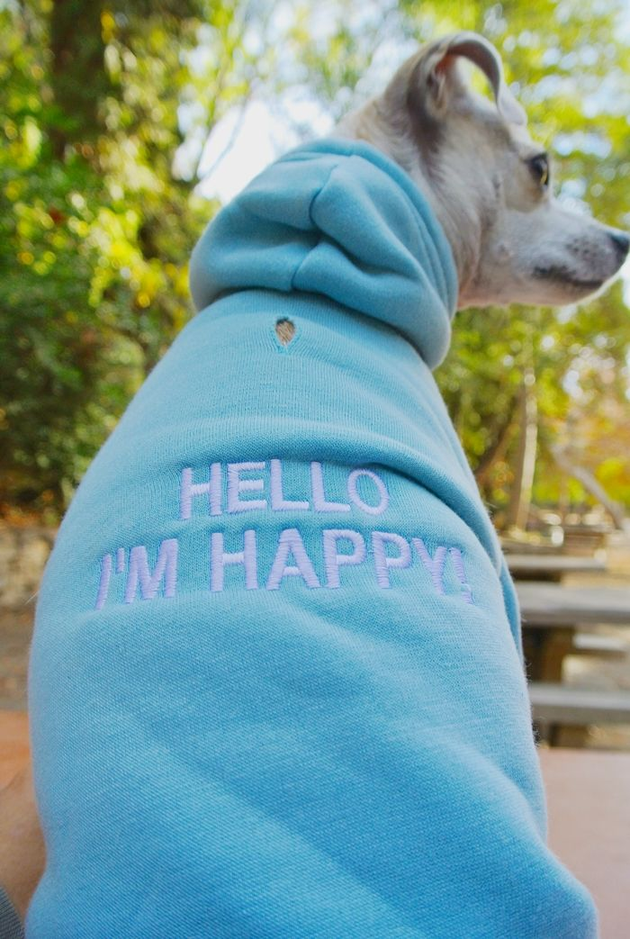Personalized Embroidered Hoodie from @hotdogcollars